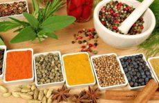 Рекомендации по выбору приправы для разных блюд