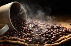 Особенности свежеобжаренного кофе и советы по покупке зерен